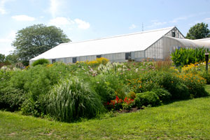 UConn Floriculture Greenhouse