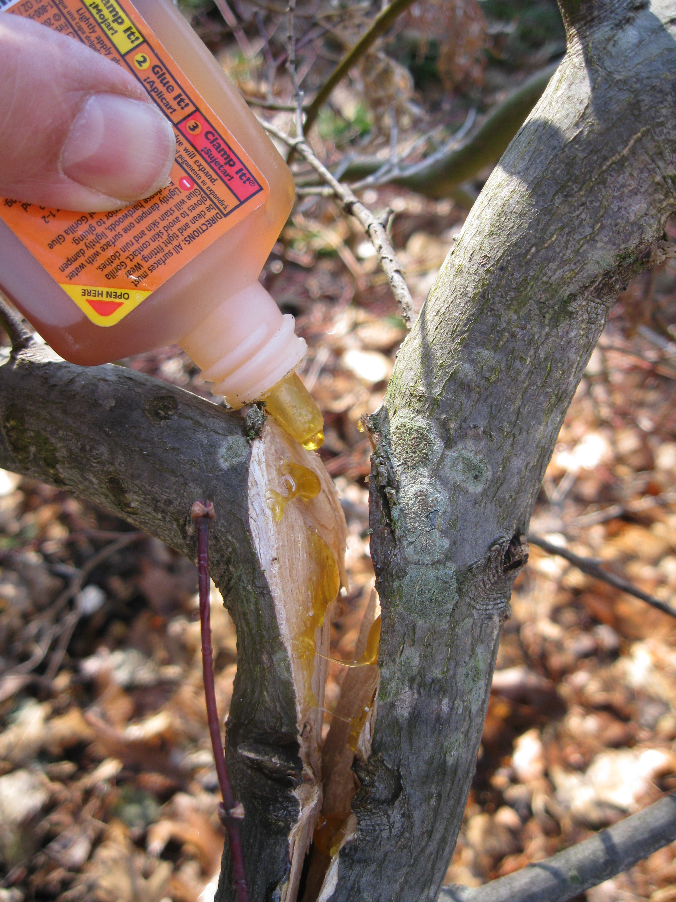 How to glue a tree to a tree 48