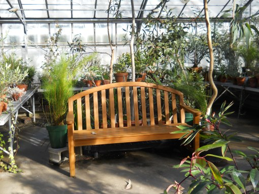 Bench waiting for you to visit and enjoy the greenhouses. C.Quish photo