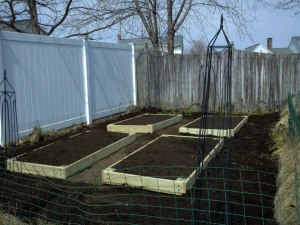 Newly filled beds.