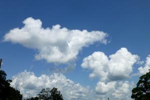 Cumulus Cloud, by Pamm Cooper