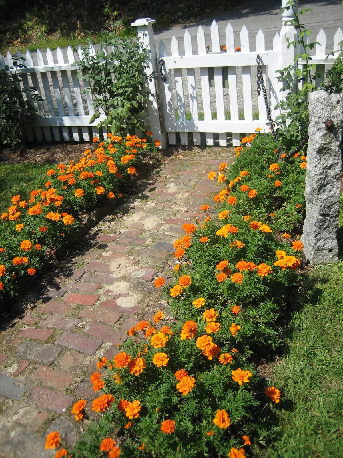 Annual benefits uconnladybug 39 s blog for How to landscape a garden