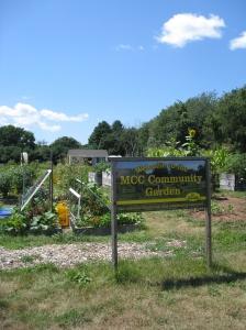 Manchester Community College Community Garden