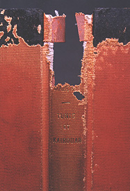 Silverfish damage to a book, https://library.nyu.edu/preservation/exhibits/presexh/slvrfsh.htm photo