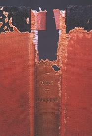 Silverfish damage to a book, https://library.nyu.edu/preservation/exhibits/presexh/slvrfsh.htm photo