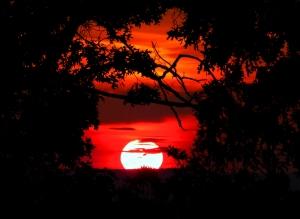 sunset henry Park Fall 2012