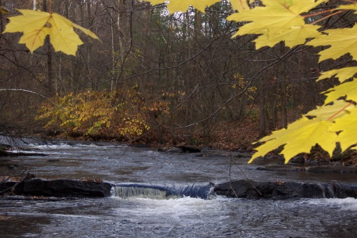 Autumn colors frame the river. SAPelton photo