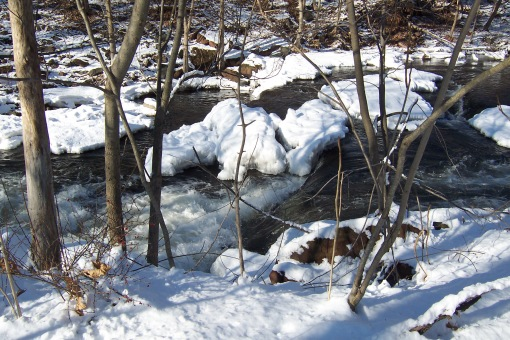 The beauty of winter along the Scantic River. SAPelton photo.