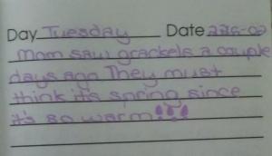 diary 3