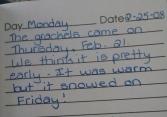 diary 6