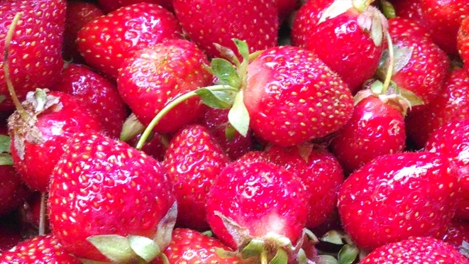 Fresh-picked strawberries