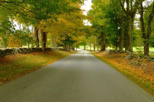 Bush Hill Road in Pomfret, Connecticut October 10, 2015