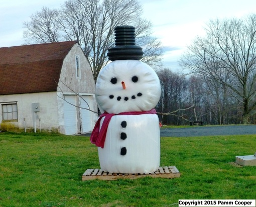 snow man made of hay bales wrapped in plastic and drainage pipe hat
