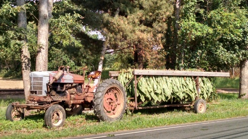 Tractor with a loaded cart of tobacco leaves
