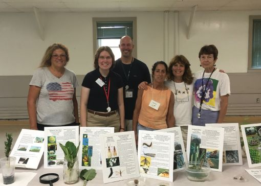 Some of the fabulous volunteers -Bug Week 2016 Amy Estabrook photo