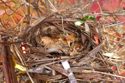 birds-nest-in-fall-with-plastic-and-ribbon