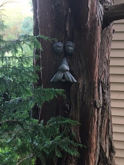 treebeard 2