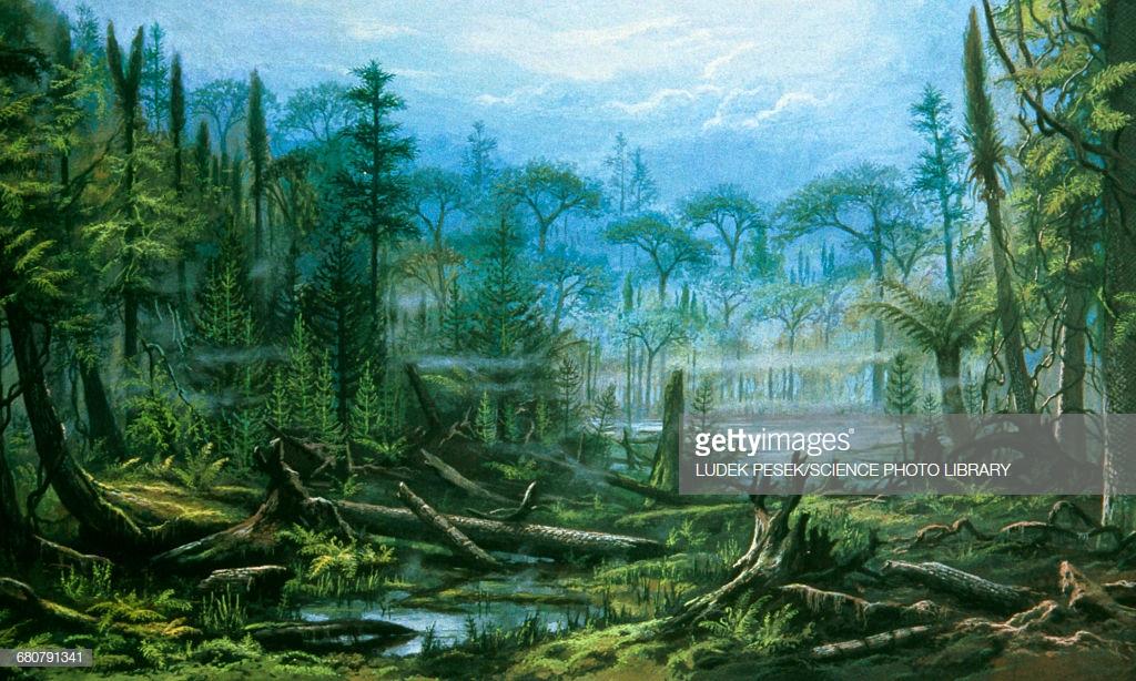 gettyimages-carbon era