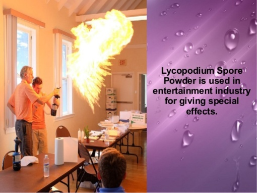various-applications-of-lycopodium-spore-and-dragons-breath-powder-3-638 from www.slideshare.net