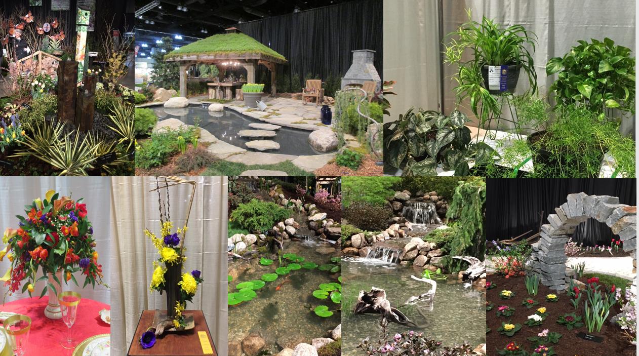 Flower show exhibits