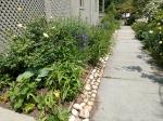 Bluestone pathway, the blue cottagegarden