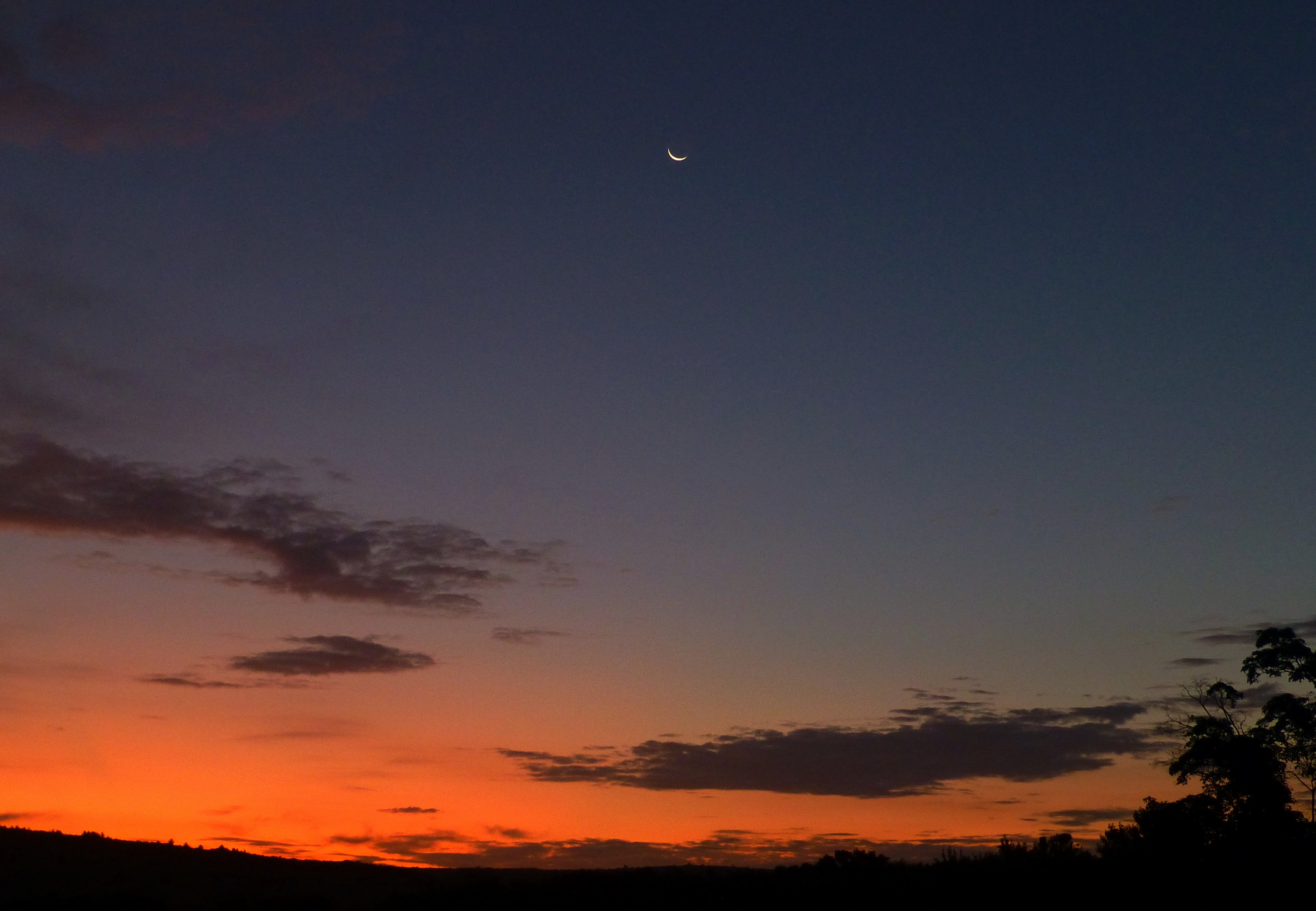 August dawn with a crescent moon