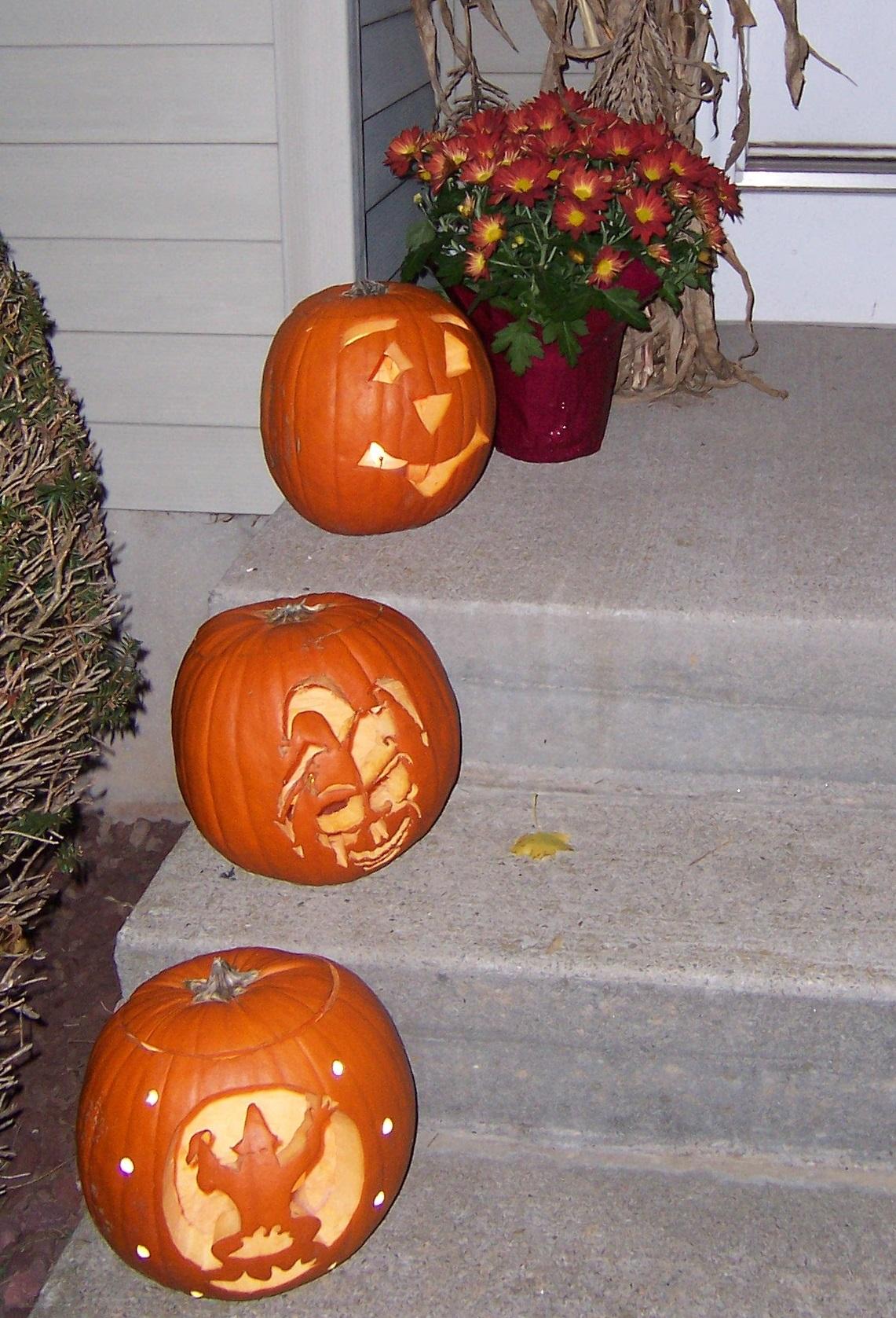 Carved Ct field pumpkins crop
