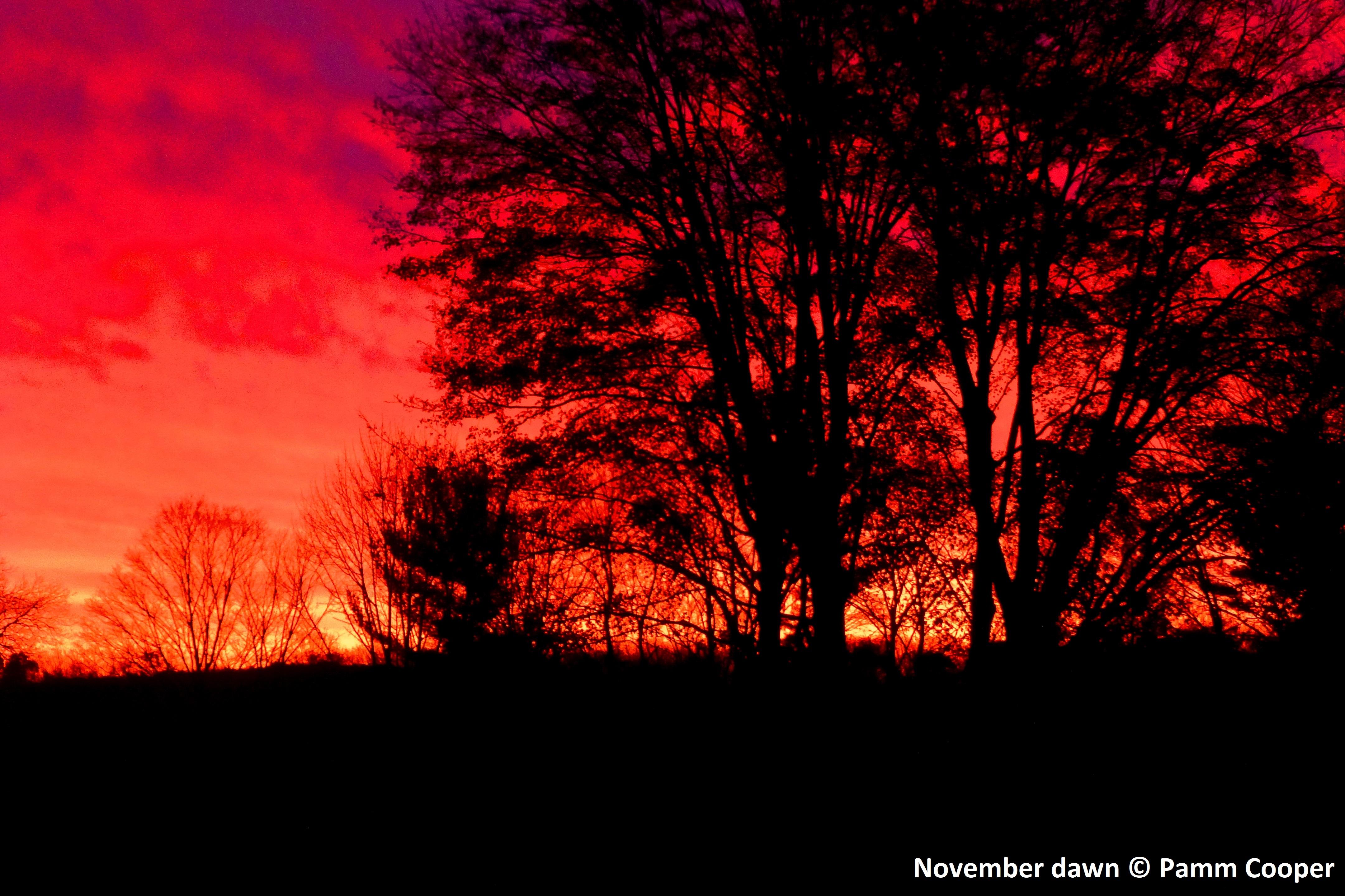 Dawn before the storm November sunrise Pamm Cooper photo
