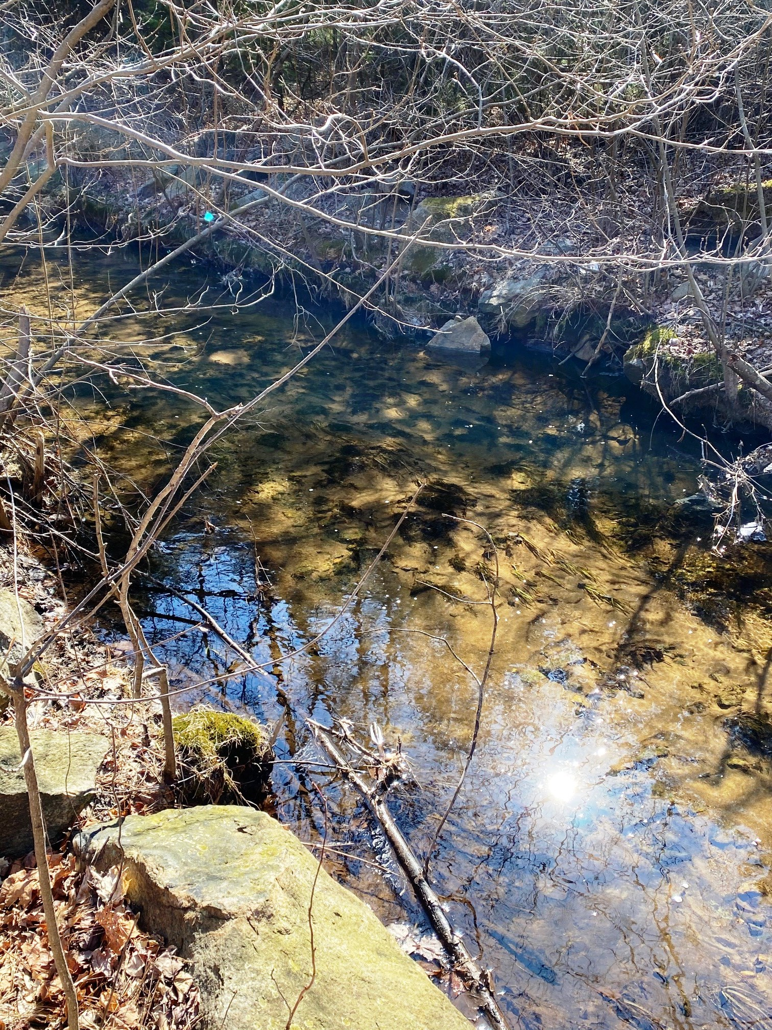 stream and sun reflection