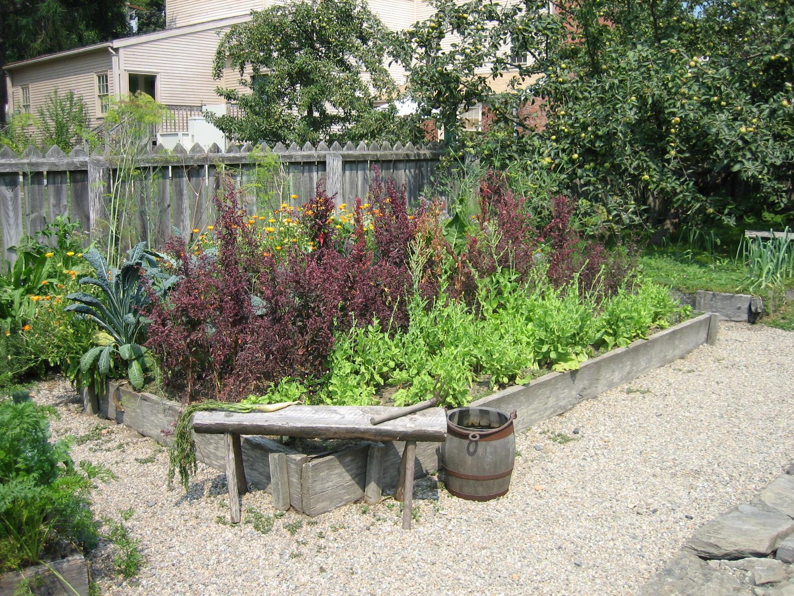 Victory garden w red orach SB07