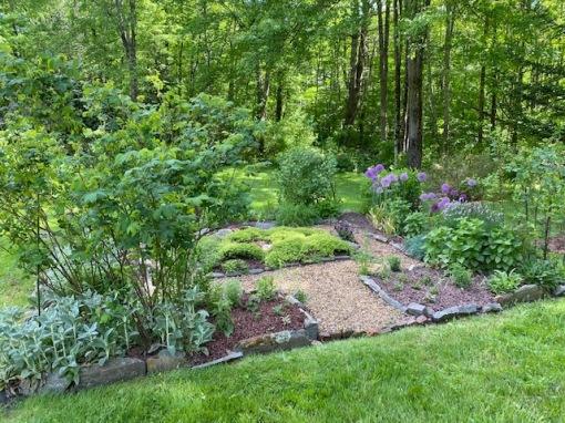 herb garden 6-20